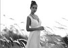 טלי מתחתנת - שמלות כלה